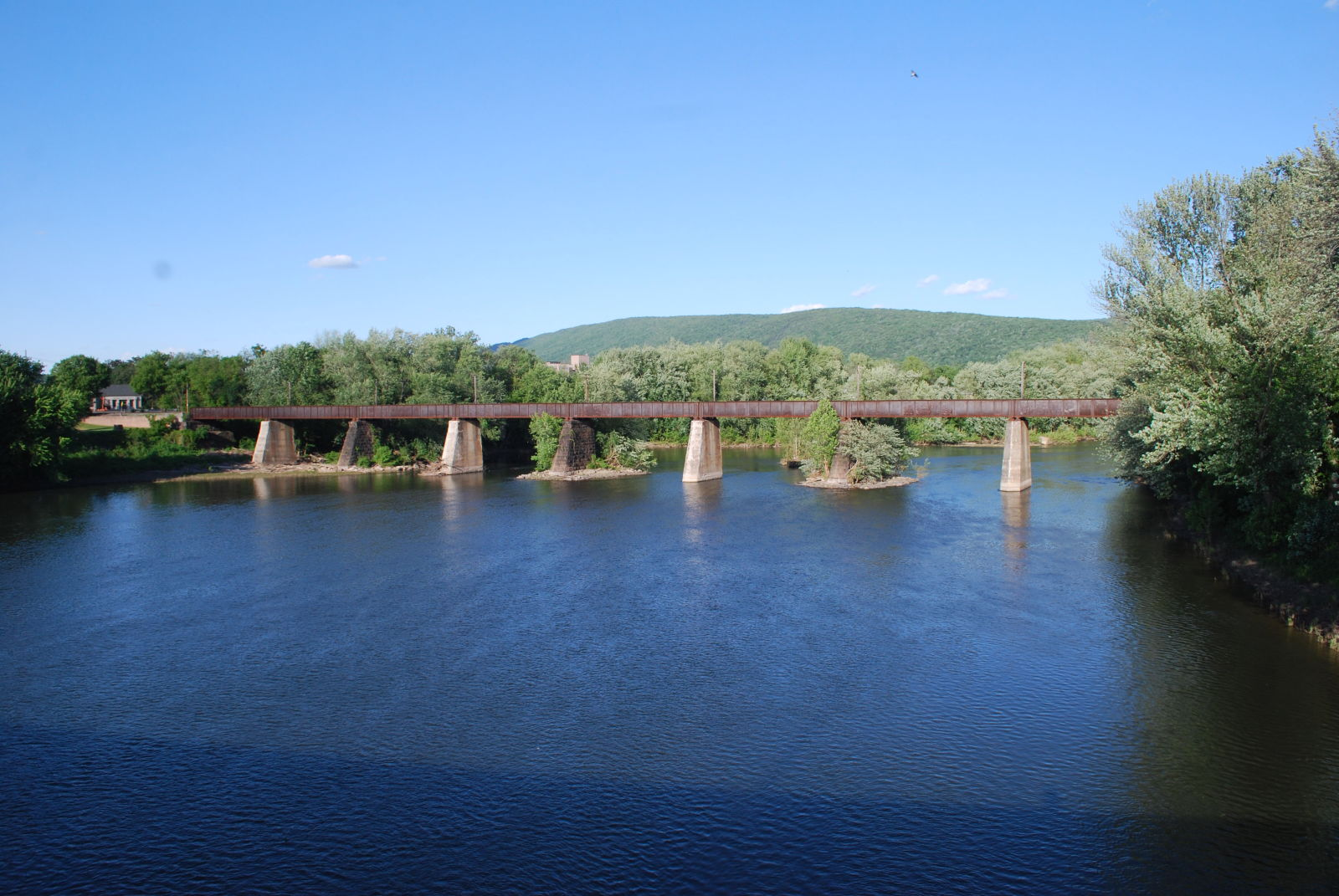 Juniata River Bridge 1